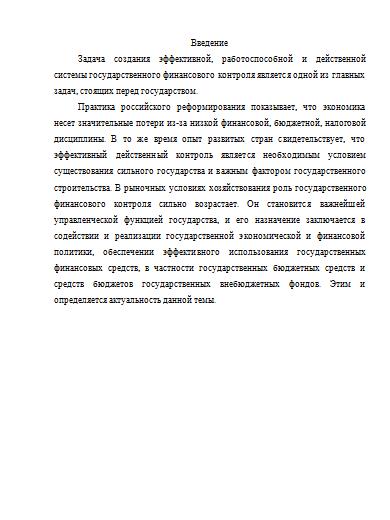 Организация финансового контроля в рф реферат 7871